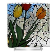 Mosaic Stained Glass - Spring Shower Shower Curtain