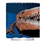 Mosasaur Tylosaurus Proiger Shower Curtain