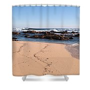 Moses Rock Beach 02 Shower Curtain