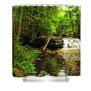 Mosquito Falls In Michigan Usa Shower Curtain