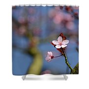 Moss And Blossoms Shower Curtain