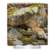 Moss And Lichens In The Scottish Highlands Shower Curtain
