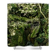 Moss And Stones By The Turquoise Forest Pond On A Summer Day No4 Shower Curtain