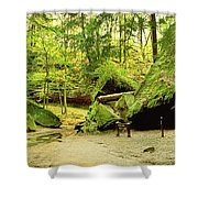 Moss Covered Rocks In Forest, Rocky Shower Curtain