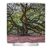 Moss Draped Limbs Shower Curtain