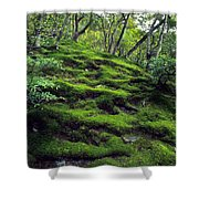 Moss Forest In Kyoto Japan Shower Curtain