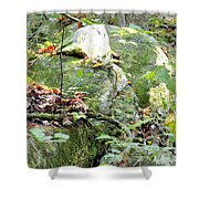 Moss Rock 3 Shower Curtain