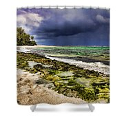 Moss Rocks Shower Curtain