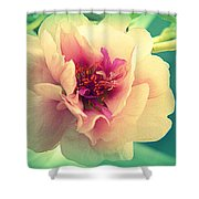 Moss Rose Abstract Shower Curtain