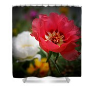 Moss Roses Shower Curtain