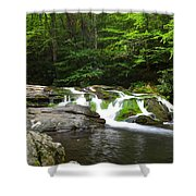 Mossy Falls Shower Curtain