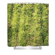 Mossy Grass Shower Curtain