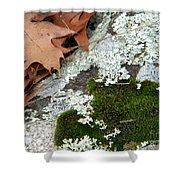 Mossy Leaves Shower Curtain