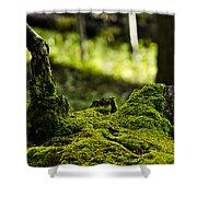 Mossy Log Shower Curtain