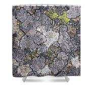 Mossy Mouldy Rock Texture Shower Curtain