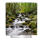 Mossy Mountain Stream Shower Curtain