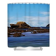 Mossy Point 375 Shower Curtain