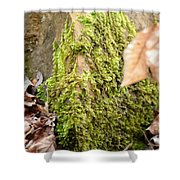 Mossy Rock Abstract 2013 Shower Curtain