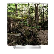 Mossy Rocks In The Forest Shower Curtain