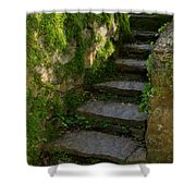 Mossy Steps Shower Curtain by Carla Parris