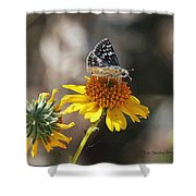 Moth And Flower Shower Curtain