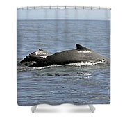Mother And Baby Shower Curtain