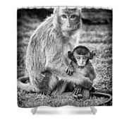 Mother And Baby Monkey Black And White Shower Curtain