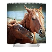 Mother And Filly Shower Curtain
