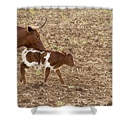 Mother And Child V5 Shower Curtain