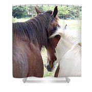 Mother And Daughter Private Moment Shower Curtain