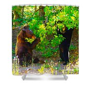 Mother Bear And Cub Shower Curtain