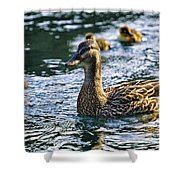 Mother Duck Shower Curtain