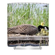 Mother Goose 2 Shower Curtain