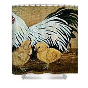 Mother Hen Shower Curtain