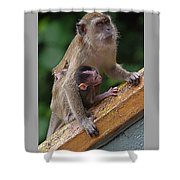 Mother Monkey And Her Baby Shower Curtain