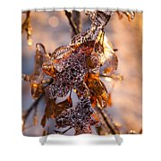 Mother Nature's Christmas Decorations - Golden Oak Leaves Jewels Shower Curtain