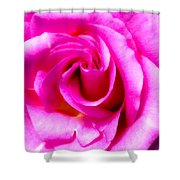 Mother's Day Rose Blank Shower Curtain