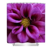 Mothers Flowers Shower Curtain