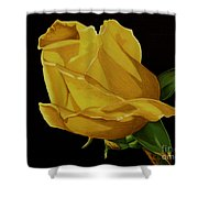 Mother's Yellow Rose Shower Curtain by Cory Still