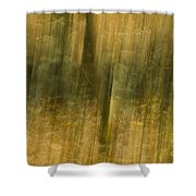Motion Series - 123 Shower Curtain