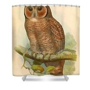 Mottled Wood Owl Shower Curtain
