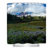 Mount Baker Lupine Meadows Shower Curtain