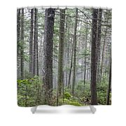 Mount Jim - Kinsman Notch New Hampshire Shower Curtain