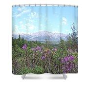 Mount Katahdin And Wild Flowers Shower Curtain