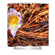 Mount Margaret Spring 14379 Shower Curtain