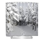 Mount Osceola Trail - White Mountains New Hampshire Shower Curtain
