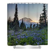 Mount Rainer Flower Fields Shower Curtain