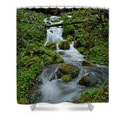 Mount Rainier Brook Shower Curtain