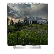 Mount Rainier Meadows Storm Brewing Shower Curtain