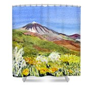 Mount Tiede In Tenerife Shower Curtain
